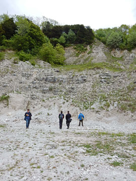 Cocking Chalk Pit