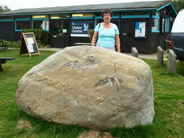 Medmerry erratic