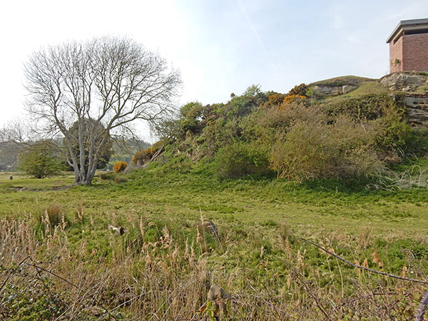 East Sussex Local Geological Sites - Toot Rock at Pett Levels